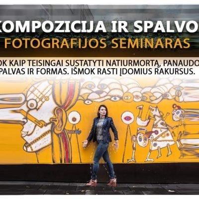 kompozicija_ir_spalvos